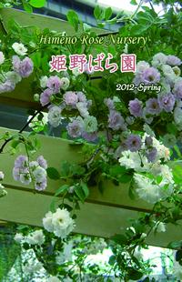 2011年春